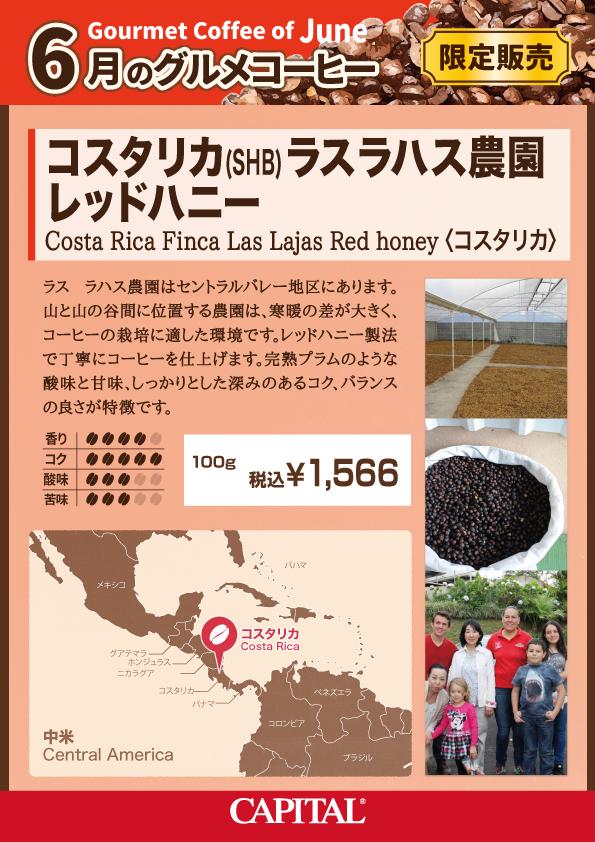 6月コスタリカ ラスラハス農園 レッドハニー