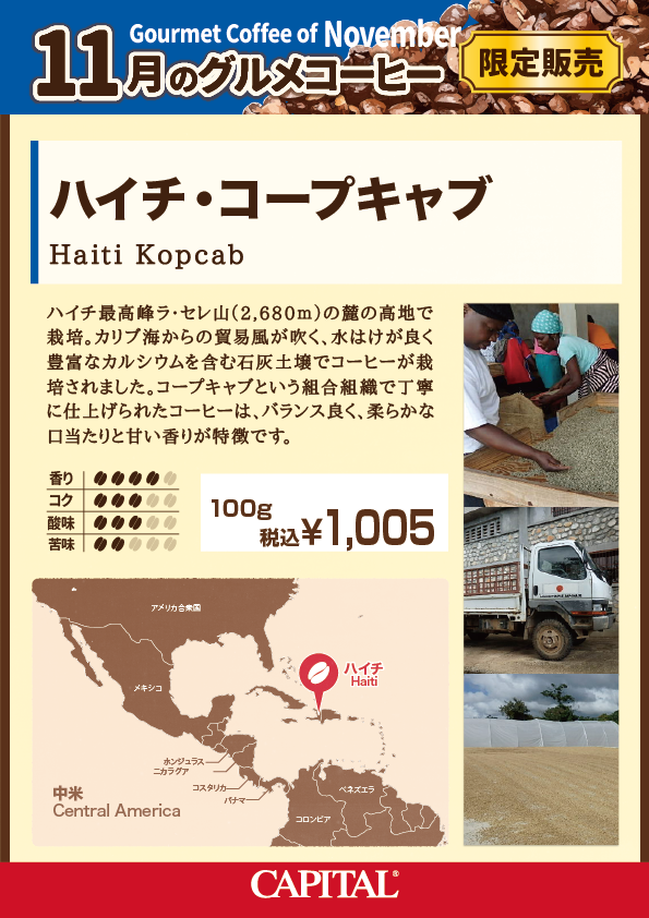 11月グルメコーヒー ハイチ コープキャブ