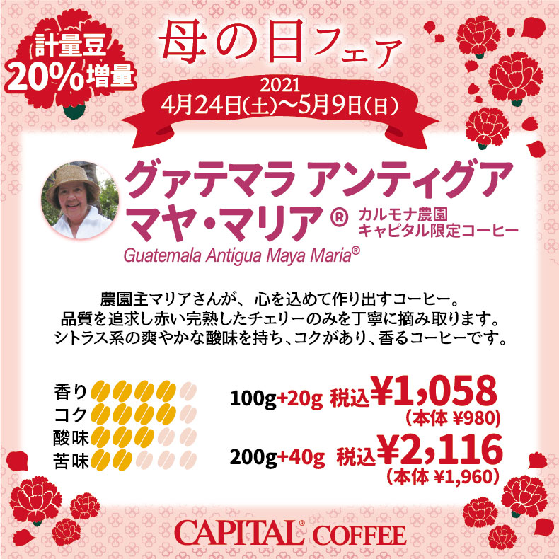 母の日おすすめコーヒー20%増量 Guatemala antigua Maya maria®【キャピタルコーヒー/CAPITAL】