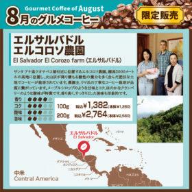 8月のグルメコーヒー エルサルバドル エルコロソ農園【キャピタルコーヒー/CAPITAL】